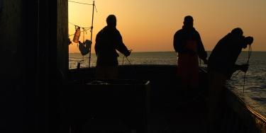 All'alba con i pescatori a pesca di polpi con nasse.